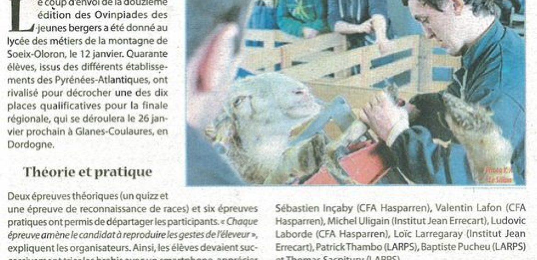 «Dix élèves qualifiés pour le régional» – Le Sillon