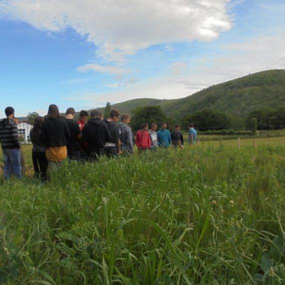 Route de la Bio à Ekibegia
