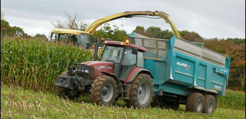 Ensilage de maïs à Irouléguy