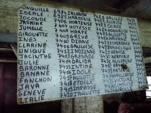 1710_auvergne (4)