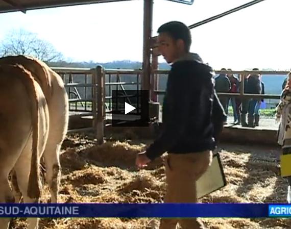 Concours Jeunes : le JT de France3