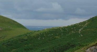 Le pastoralisme avec EHLG