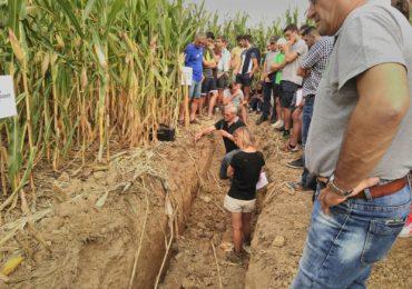 Conservation des sols à Béhasque