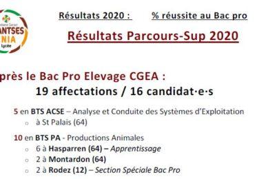 Résultats Parcours Sup 2020 : les 35 affectations !